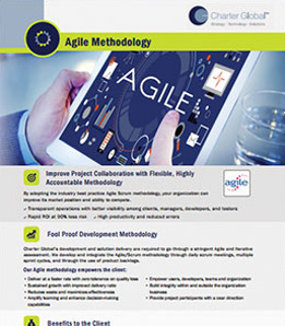 Charter Global Agile Methodology
