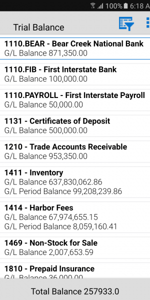 Trial-Balance-Review
