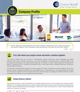 Charter Global Company Profile