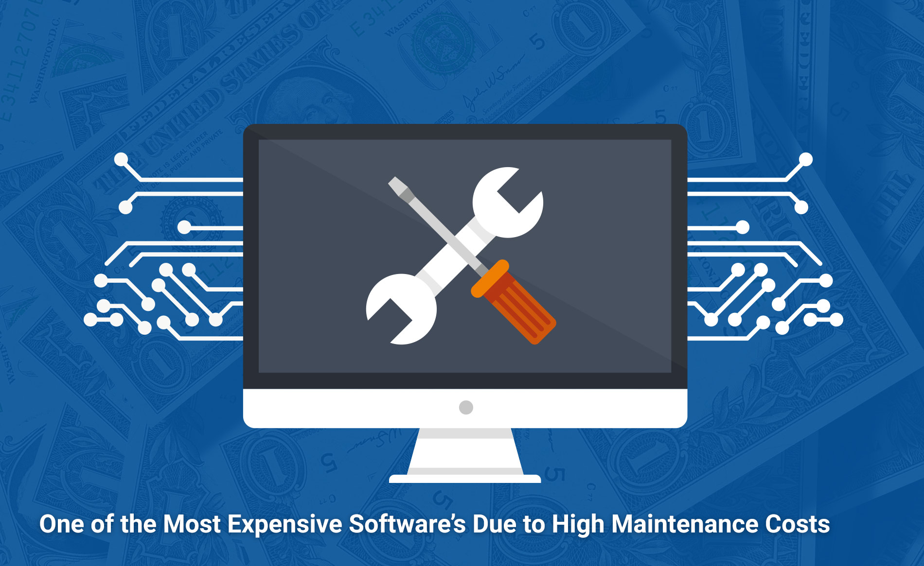 One of the Most Expensive Softwares Due to High Maintenance Costs